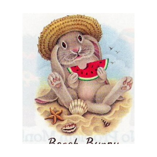 ウサギ&スイカ (05−L) ラビット tシャツ 半袖 カットソー 丸首型 クルーネック 綿100% コットン トップス 服 レディース メンズ シンプル かわいい おしゃれ
