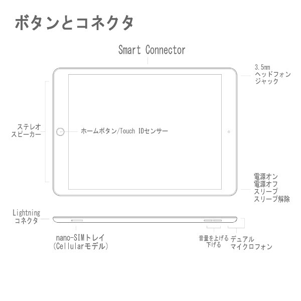 Apple iPad MW792J/A 128GB ゴールド Wi-Fiモデル 10.2型 Retinaディスプレイ MW792J 本体 アップルペンシル スマートキーボード対応 2019年秋モデル|try3|03