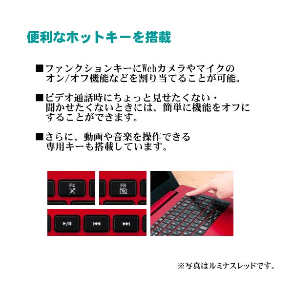 NEC LAVIE ノートパソコン 本体 Smart NS(B) Office搭載 筆ぐるめ シャンパンゴールド Windows 10 Home 15.6型 Celeron 4GB 500GB マウス付き PC-SN18CRSAB-2|try3|07
