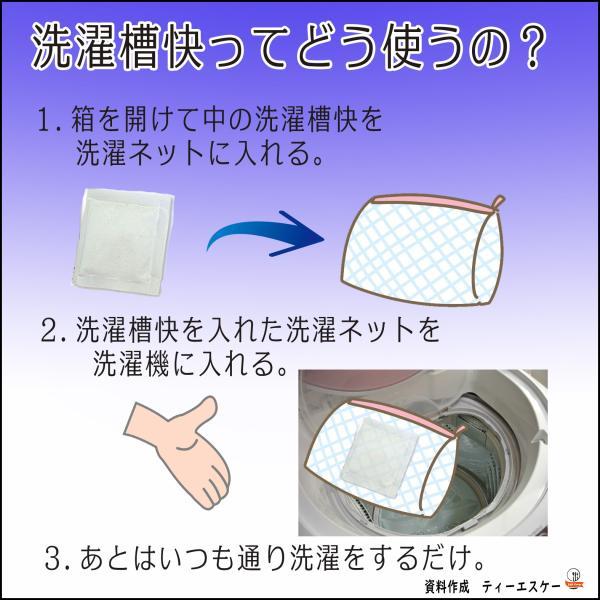 洗濯槽クリーナー 洗濯槽快 30g 10個セット ホタテ貝焼成カルシウム100%|tsk-store|02