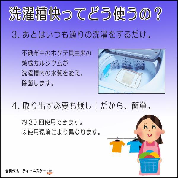 洗濯槽クリーナー 洗濯槽快 30g  2包組 ネット付き ホタテ貝焼成カルシウム100%|tsk-store|04