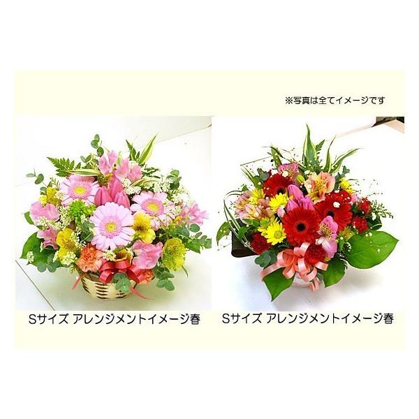 花 ギフト 誕生日 プレゼント フラワーアレンジメント  送料無料 季節の花でおまかせ お得サイズS  画像配信OK|tsukaguchi|12