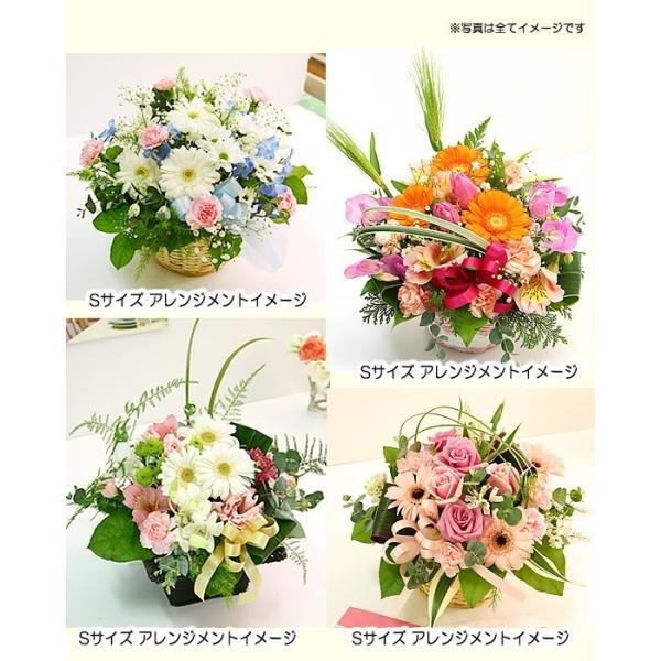 花 ギフト 誕生日 プレゼント フラワーアレンジメント  送料無料 季節の花でおまかせ お得サイズS  画像配信OK|tsukaguchi|13