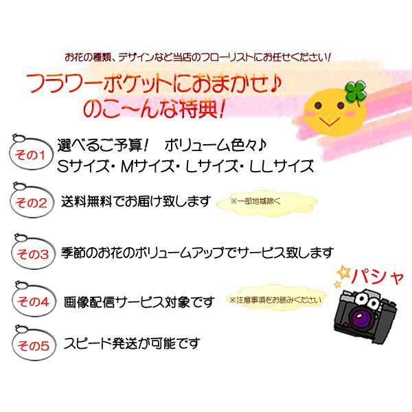 花 ギフト 誕生日 プレゼント フラワーアレンジメント  送料無料 季節の花でおまかせ お得サイズS  画像配信OK|tsukaguchi|03