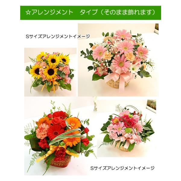 花 ギフト 誕生日 プレゼント フラワーアレンジメント  送料無料 季節の花でおまかせ お得サイズS  画像配信OK|tsukaguchi|04