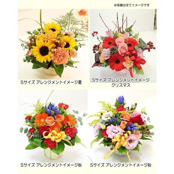 花 ギフト 誕生日 プレゼント フラワーアレンジメント  送料無料 季節の花でおまかせ お得サイズS  画像配信OK|tsukaguchi|06