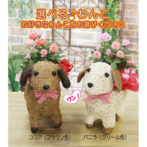 送料無料 可愛い瞳が人気 選べる わんこの背中に季節の鉢植え ギフト プレゼント|tsukaguchi|08