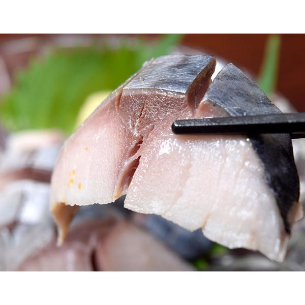 しめさば 〆サバ しめ鯖 業務用『昆布シメサバ』国産サバ使用 半身約120g×15枚セット 業務用箱 国内加工 訳あり 夏 晩酌 冷凍 送料無料|tsukiji-ichiba2|10
