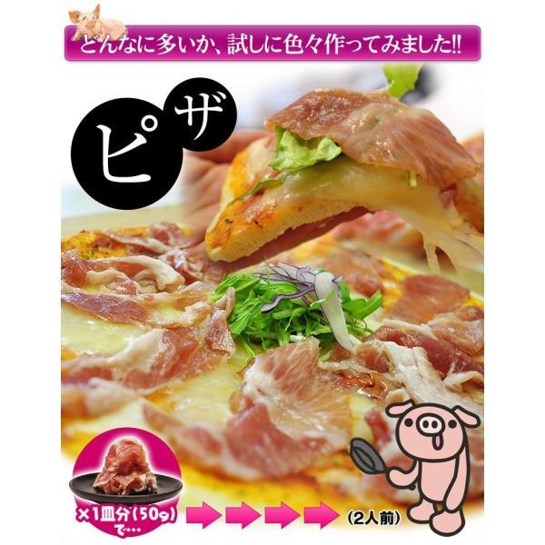 生ハム 訳あり 切り落とし 送料無料 生ハムこま切り落とし 約500g×2P 1キロ 大容量 冷凍 おつまみ  [同梱不可] tsukiji-ichiba2 10