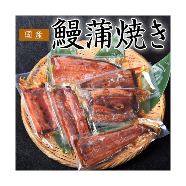 丑の日 うなぎ 鰻 ウナギ サイズまちまち 国産 鰻蒲焼き 500g 5枚〜9枚 タレ・山椒付き スタミナ 同梱不可 送料無料|tsukiji-ichiba2