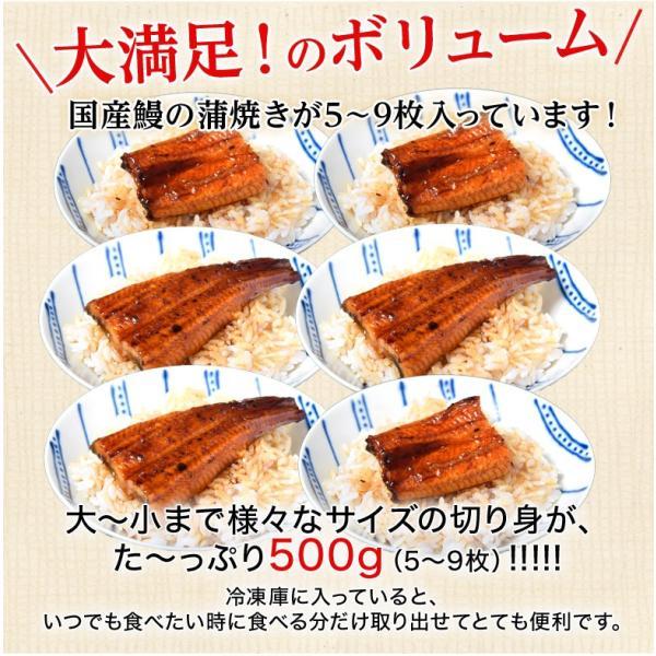 丑の日 うなぎ 鰻 ウナギ サイズまちまち 国産 鰻蒲焼き 500g 5枚〜9枚 タレ・山椒付き スタミナ 同梱不可 送料無料|tsukiji-ichiba2|03