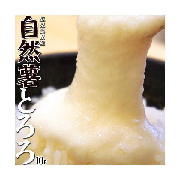 とろろ 国産 鹿児島県産 自然薯[じねんじょ]とろろ 40g×10パックセット [冷凍同梱可能]|tsukiji-ichiba2