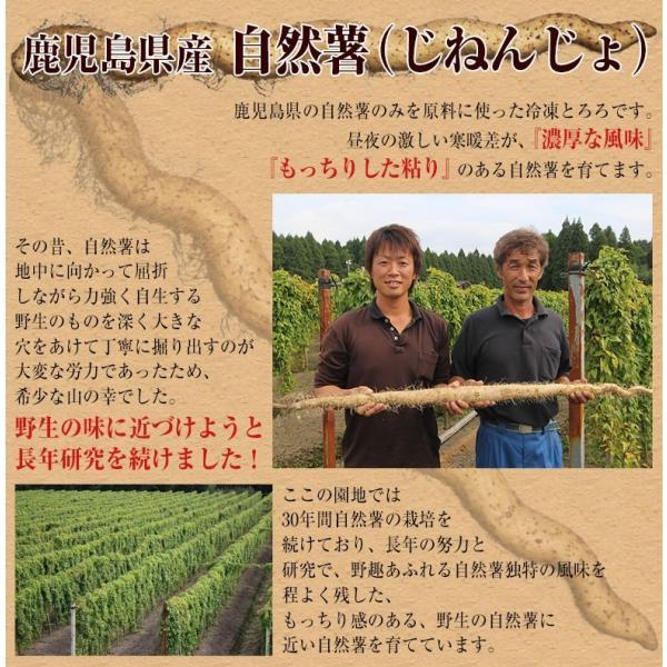 とろろ 国産 鹿児島県産 自然薯[じねんじょ]とろろ 40g×10パックセット [冷凍同梱可能]|tsukiji-ichiba2|05