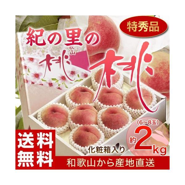 もも 桃 モモ お中元 御中元 ギフト 和歌山県産 紀の里の桃 特秀品 約2kg (6〜8玉) 化粧箱 送料無料 産地直送 tsukiji-ichiba2