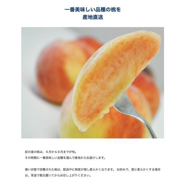 もも 桃 モモ お中元 御中元 ギフト 和歌山県産 紀の里の桃 特秀品 約2kg (6〜8玉) 化粧箱 送料無料 産地直送 tsukiji-ichiba2 04