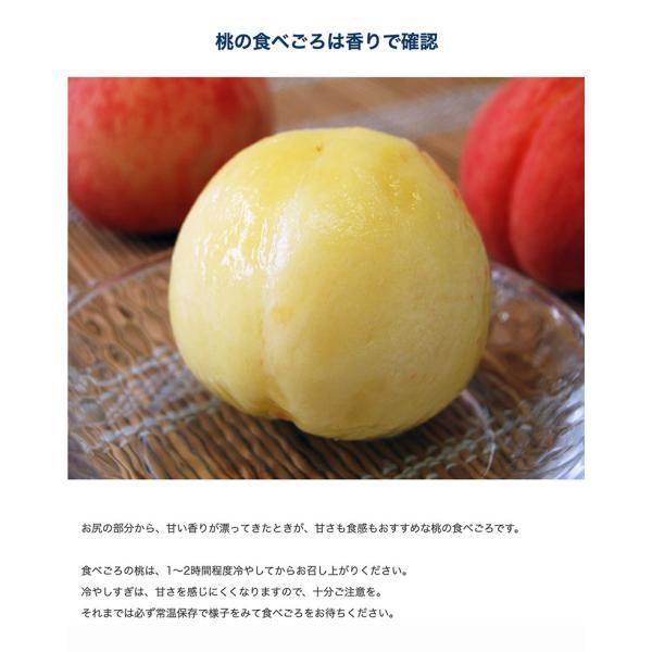 もも 桃 モモ お中元 御中元 ギフト 和歌山県産 紀の里の桃 特秀品 約2kg (6〜8玉) 化粧箱 送料無料 産地直送 tsukiji-ichiba2 05