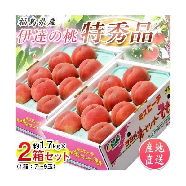 桃 もも 福島県産 伊達の桃 特秀品 約1.5kg×2箱 1箱あたり5〜10玉 送料無料 産地直送 tsukiji-ichiba2