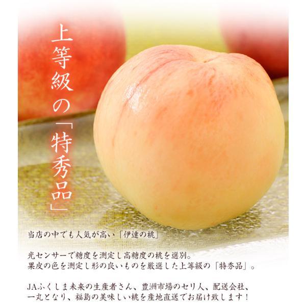 桃 もも 福島県産 伊達の桃 特秀品 約1.5kg×2箱 1箱あたり5〜10玉 送料無料 産地直送 tsukiji-ichiba2 02