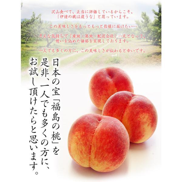 桃 もも 福島県産 伊達の桃 特秀品 約1.5kg×2箱 1箱あたり5〜10玉 送料無料 産地直送 tsukiji-ichiba2 04