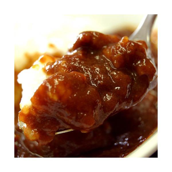 カレー ギフト 飛騨牛カレー 200g×2袋 カレールー カレーライス ごはんのおとも ご飯のお供 冷凍 同梱OK|tsukiji-ichiba2|05