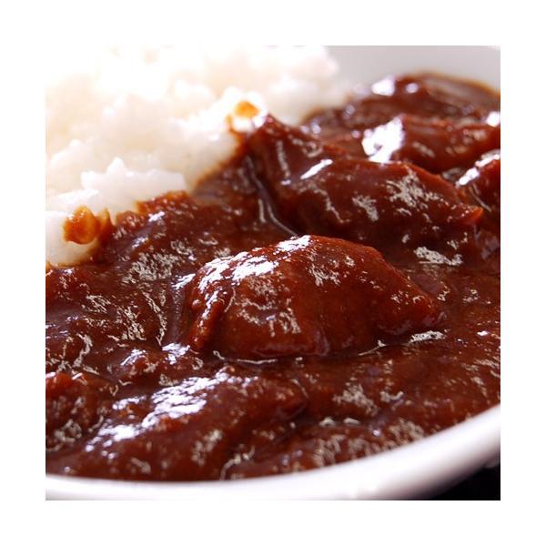 カレー ギフト 送料無料 飛騨牛カレー 200g×10袋 カレールー カレーライス ご飯のお供 ごはんのおとも 冷凍 同梱不可|tsukiji-ichiba2|02