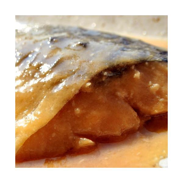 さば サバ 鯖 サバの味噌煮 95g×20パックセット 冷凍同梱不可 送料無料|tsukiji-ichiba2|11