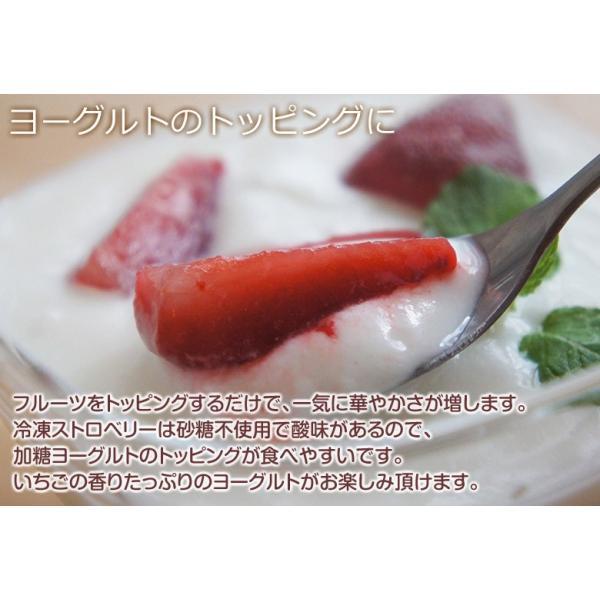 ストロベリー いちご 冷凍ストロベリー 大容量 1キロ 500g×2袋 冷凍フルーツ イチゴ 冷凍 同梱可能|tsukiji-ichiba2|13