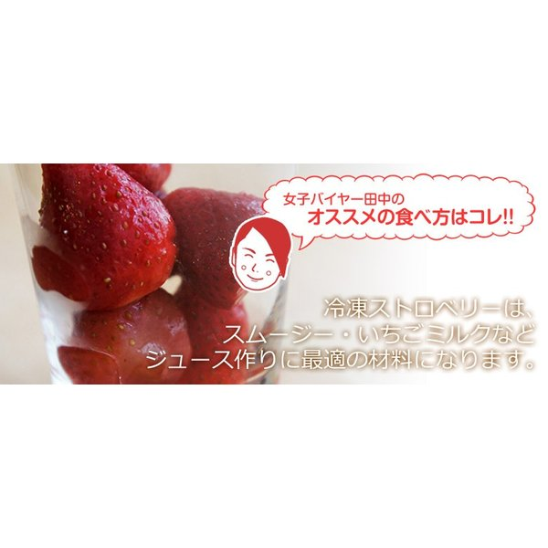 ストロベリー いちご 冷凍ストロベリー 大容量 1キロ 500g×2袋 冷凍フルーツ イチゴ 冷凍 同梱可能|tsukiji-ichiba2|09