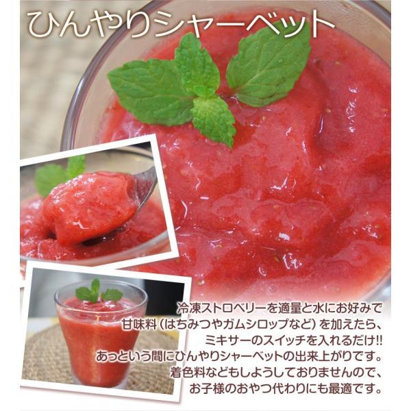ストロベリー いちご 冷凍ストロベリー 大容量 1キロ 500g×2袋 冷凍フルーツ イチゴ 冷凍 同梱可能|tsukiji-ichiba2|10