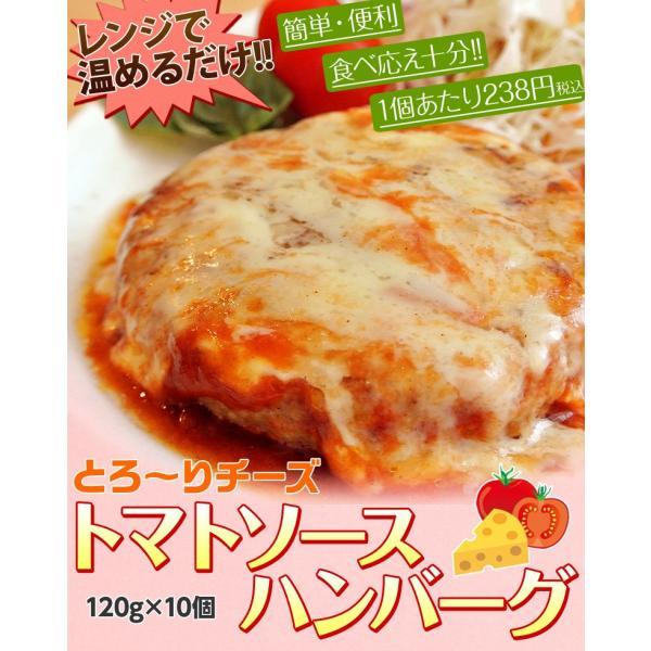 ご飯のお供 送料無料トマトソース ハンバーグ 120g×10個 チーズ ごはんのおとも 冷凍 同梱不可|tsukiji-ichiba2|02