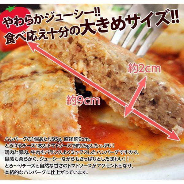 ご飯のお供 送料無料トマトソース ハンバーグ 120g×10個 チーズ ごはんのおとも 冷凍 同梱不可|tsukiji-ichiba2|04