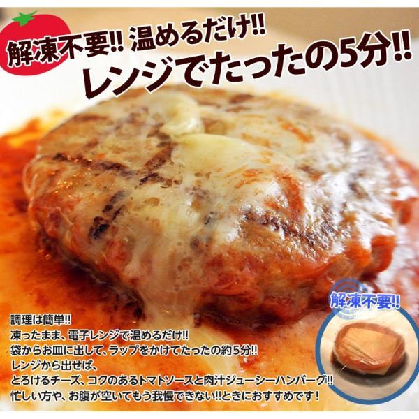 ご飯のお供 送料無料トマトソース ハンバーグ 120g×10個 チーズ ごはんのおとも 冷凍 同梱不可|tsukiji-ichiba2|05