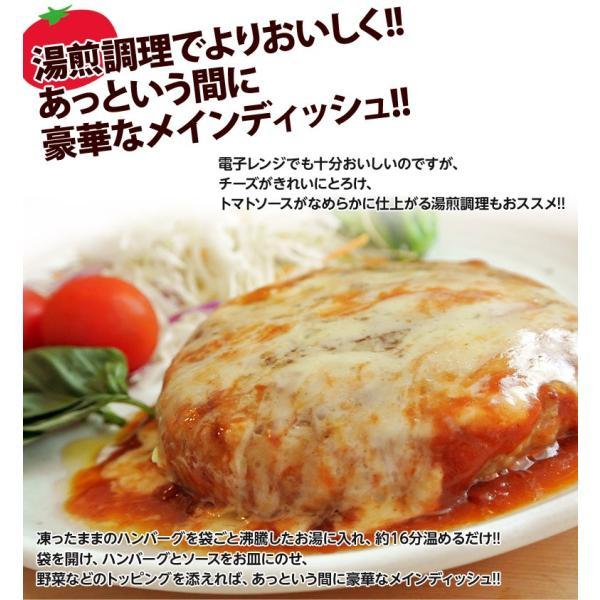 ご飯のお供 送料無料トマトソース ハンバーグ 120g×10個 チーズ ごはんのおとも 冷凍 同梱不可|tsukiji-ichiba2|06