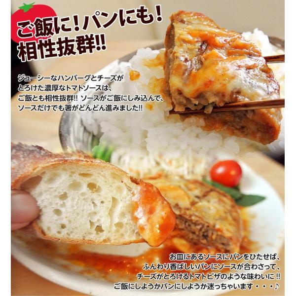 ご飯のお供 送料無料トマトソース ハンバーグ 120g×10個 チーズ ごはんのおとも 冷凍 同梱不可|tsukiji-ichiba2|07