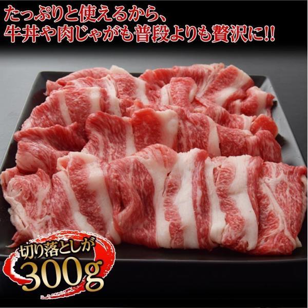 ギフト 肉 牛肉 牛 すき焼き サーロイン 入り 最高級 A5 黒毛和牛 仙台牛 特選セット 4種 1キロ 内祝い プレゼント 送料無料 冷凍同梱不可|tsukiji-ichiba2|11