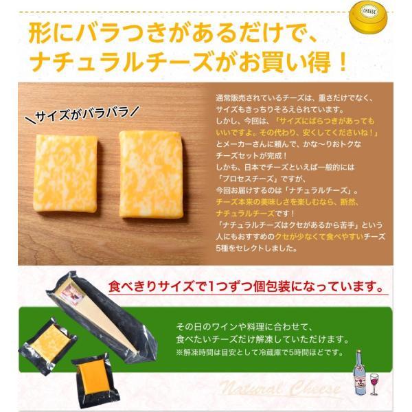 訳あり チーズ 不揃い 送料無料 ナチュラルチーズ5種セット 500g 冷凍同梱不可|tsukiji-ichiba2|03