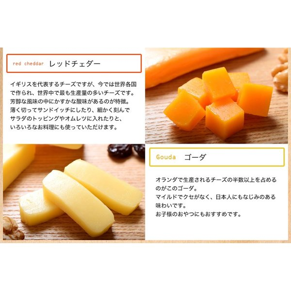 訳あり チーズ 不揃い 送料無料 ナチュラルチーズ5種セット 500g 冷凍同梱不可|tsukiji-ichiba2|05
