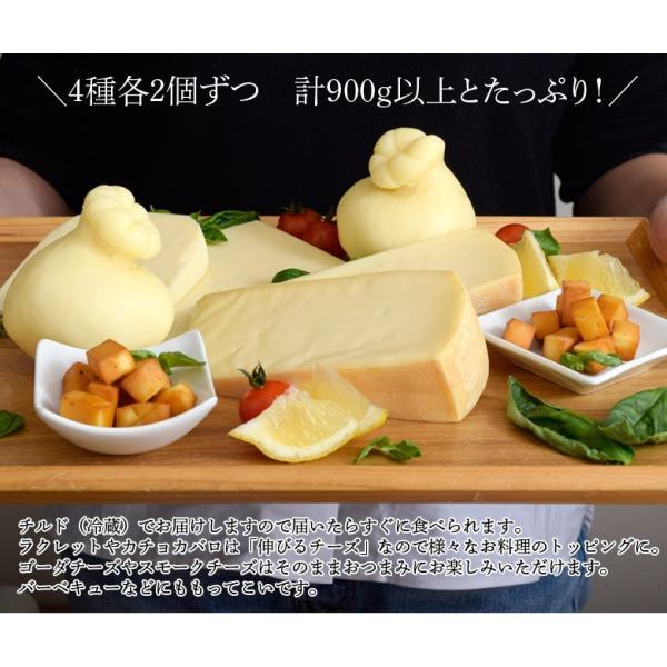 チーズ 花畑牧場 花畑牧場のお試しチーズセット 4種8個 ラクレット カチョカバロ ゴーダ スモークチーズ 冷蔵 同梱不可 送料無料 tsukiji-ichiba2 11
