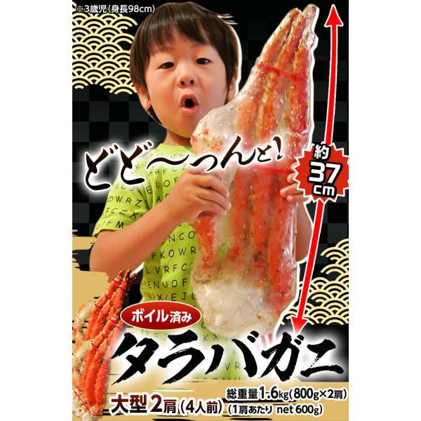 タラバ蟹 タラバガニ たらばがに ロシア産 特大 ボイル 約800g×2肩 合計1.6kg 4人前相当 送料無料 冷凍 たらば蟹 かに カニ 脚 タラバ|tsukiji-ichiba2|03