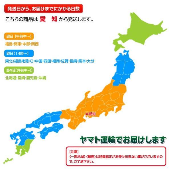 生イベリコ豚 ベジョータ 肩ロース 厚切りステーキ 2枚入り 320g以上 スペイン産 フレッシュ イベリコ 豚肉 冷蔵 同梱不可|tsukiji-ichiba2|07