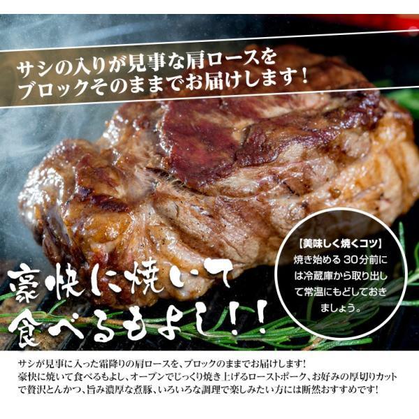 生イベリコ豚 ベジョータ 肩ロース ブロック 約500g スペイン産 フレッシュ イベリコ 豚肉 冷蔵 同梱不可 tsukiji-ichiba2 05