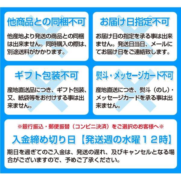 生イベリコ豚 ベジョータ 肩ロース ブロック 約500g スペイン産 フレッシュ イベリコ 豚肉 冷蔵 同梱不可 tsukiji-ichiba2 10