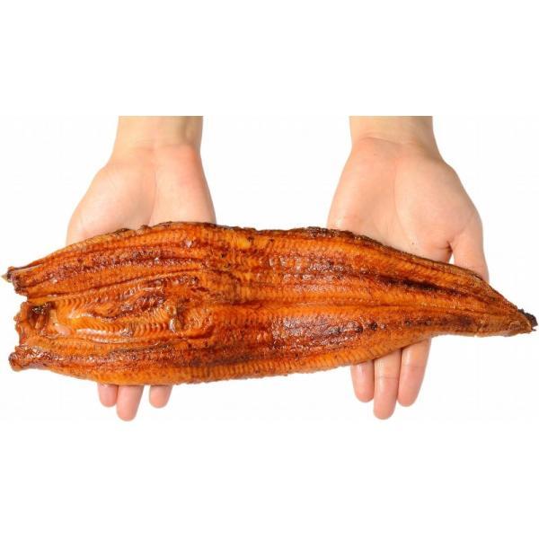 超特大 うなぎ 蒲焼き 平均330g前後×4尾 タレ付き (中国産 うなぎ ウナギ 鰻)|tsukiji-ousama|16