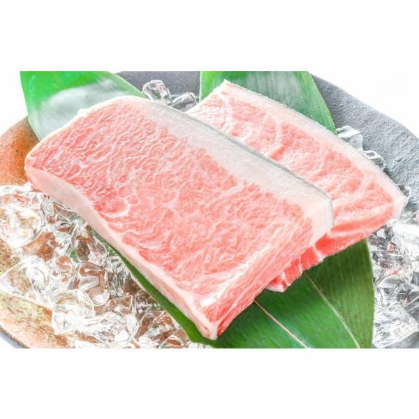 (マグロ まぐろ 鮪) 本まぐろ 大トロ 1kg (本マグロ 本鮪 刺身)|tsukiji-ousama|03