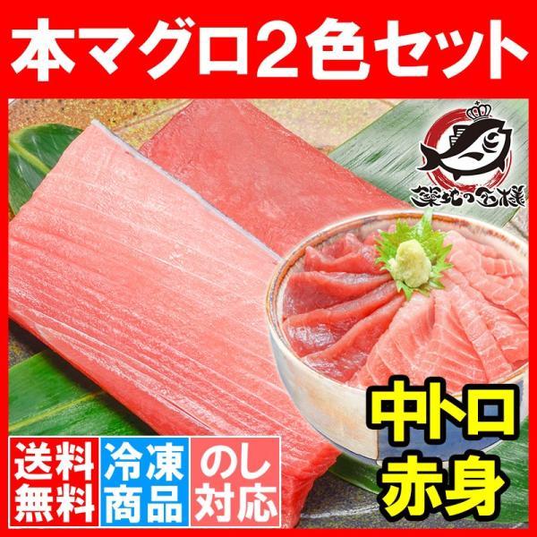 (マグロ まぐろ 鮪) 本まぐろ 中トロ 200g&赤身200gセット (本マグロ 本鮪 刺身)|tsukiji-ousama