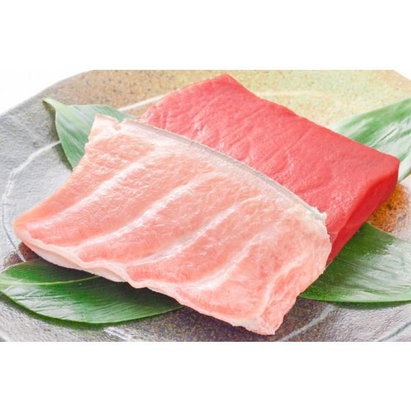 (マグロ まぐろ 鮪) 本まぐろ 大トロ 200g&赤身200gセット (本マグロ 本鮪 刺身)|tsukiji-ousama|04
