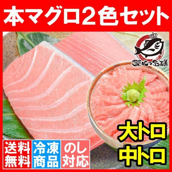 (マグロ まぐろ 鮪) 本まぐろ 大トロ 200g&中トロ200gセット (本マグロ 本鮪 刺身)|tsukiji-ousama
