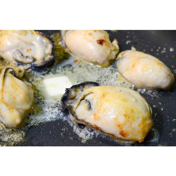 (カキ かき 牡蠣)広島産 牡蠣 1kg 2Lサイズ (BBQ バーベキュー)|tsukiji-ousama|09