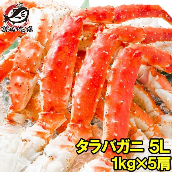 タラバガニ たらばがに 特大 極太 5L 1kg ×5肩 セット 合計 5kg 前後 足 脚 肩 セクション 正規品 かに カニ 蟹 ボイル 冷凍 かに鍋 焼きガニ tsukiji-ousama