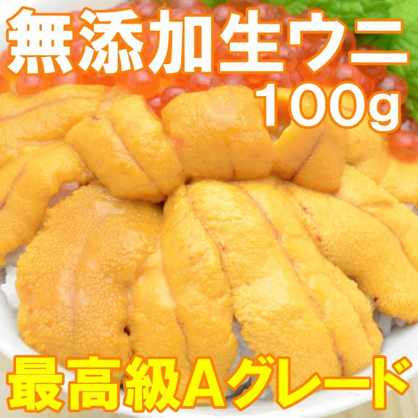 生ウニ 生うに 冷凍 無添加 天然 1kg 100g×10パック(ウニ うに 雲丹)|tsukiji-ousama